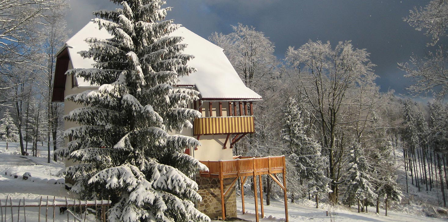 villa_winter.jpg