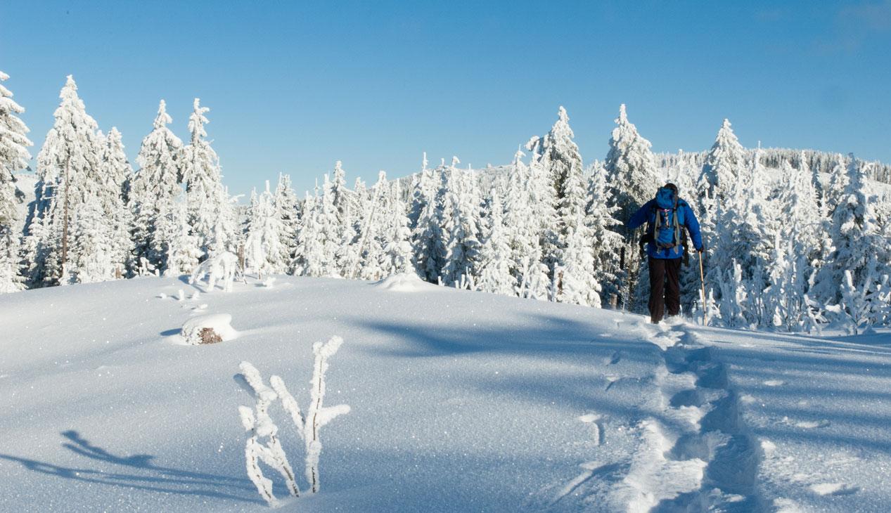 Schneeschuhwandern__DSC_6898_.jpg