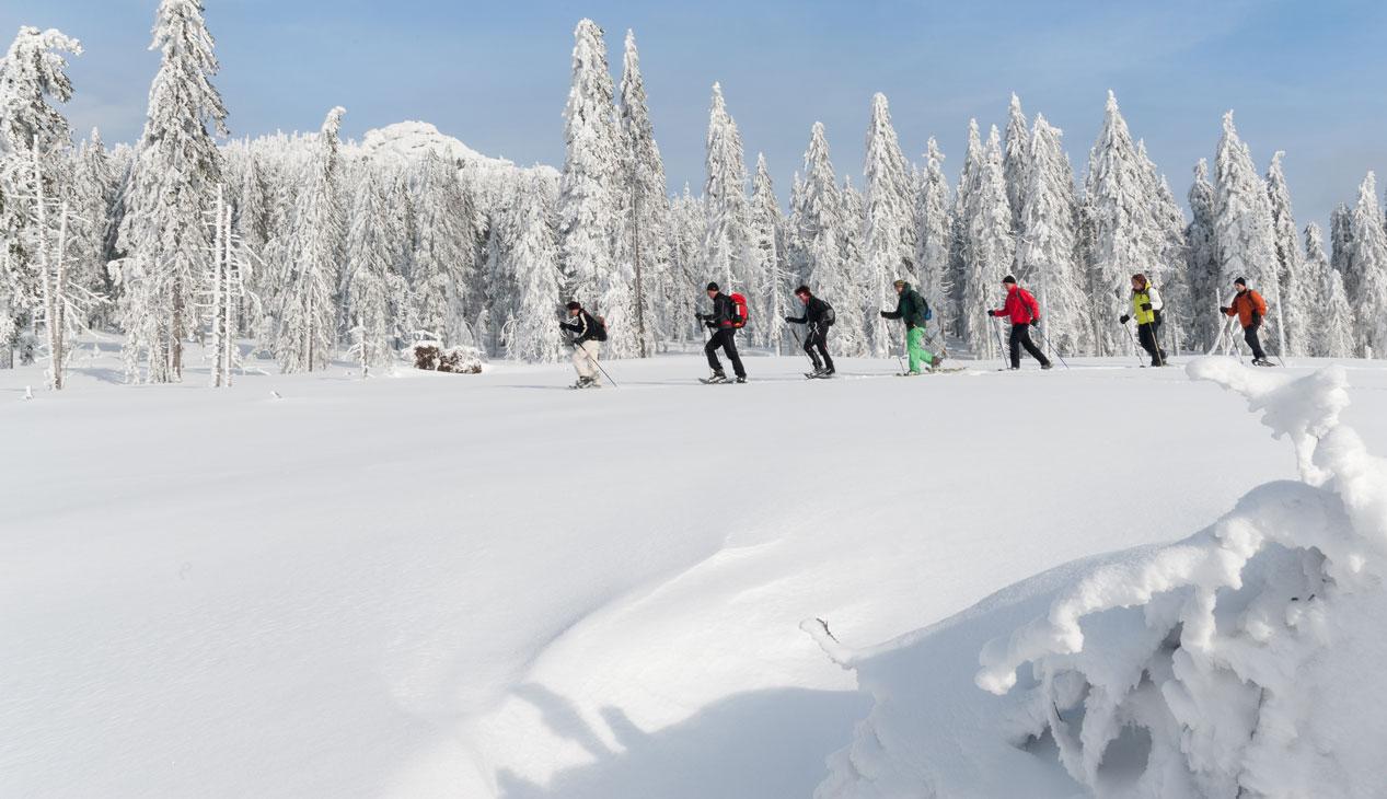 Schneeschuhwandern___7001235_.jpg