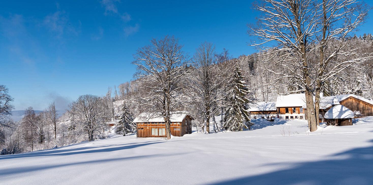 Gutsalm_Harlachberg_Winter_810_4048.jpg