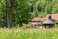 Urlaub am Harlachberg_4