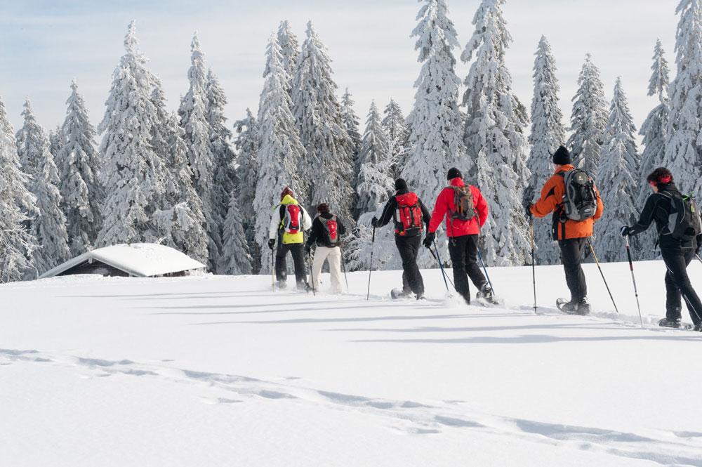 Schneeschuhwandern___7001200_.jpg